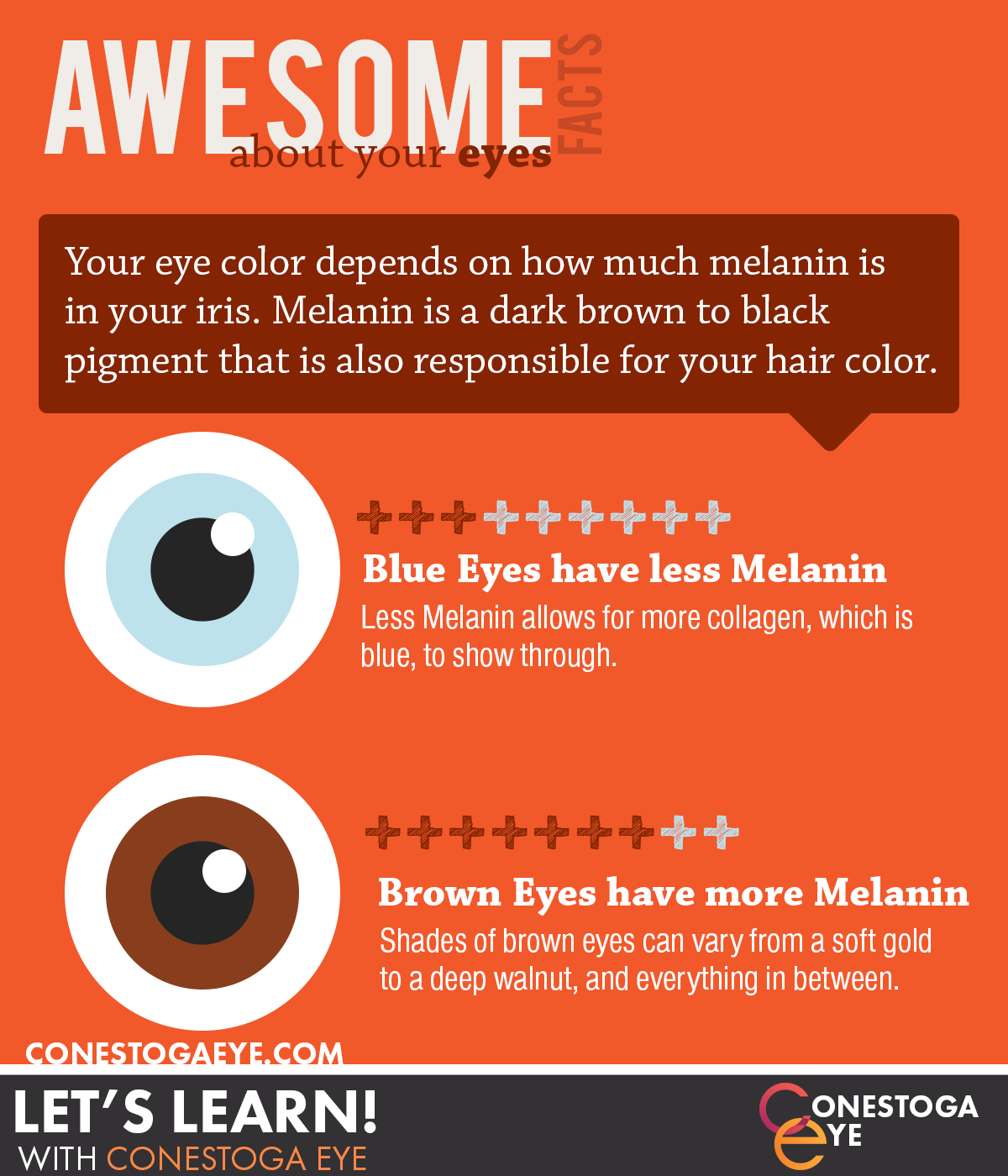 AwesomeFacts1