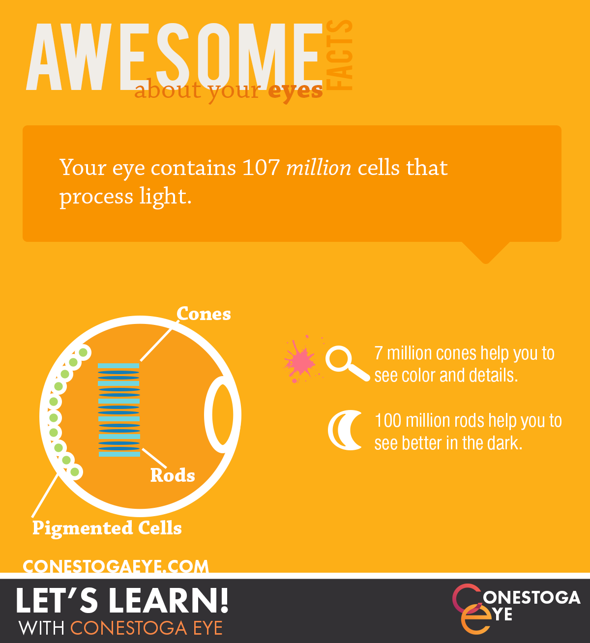 AwesomeFacts3
